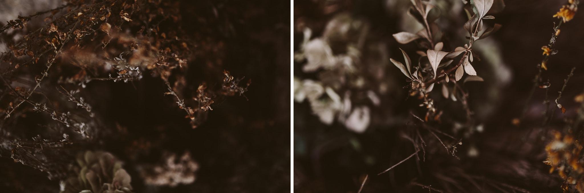 fotografia-boda-segovia-11