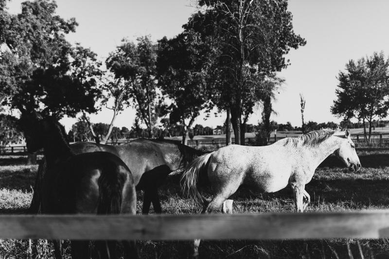 Fotografo-Bodas-Madrid-68