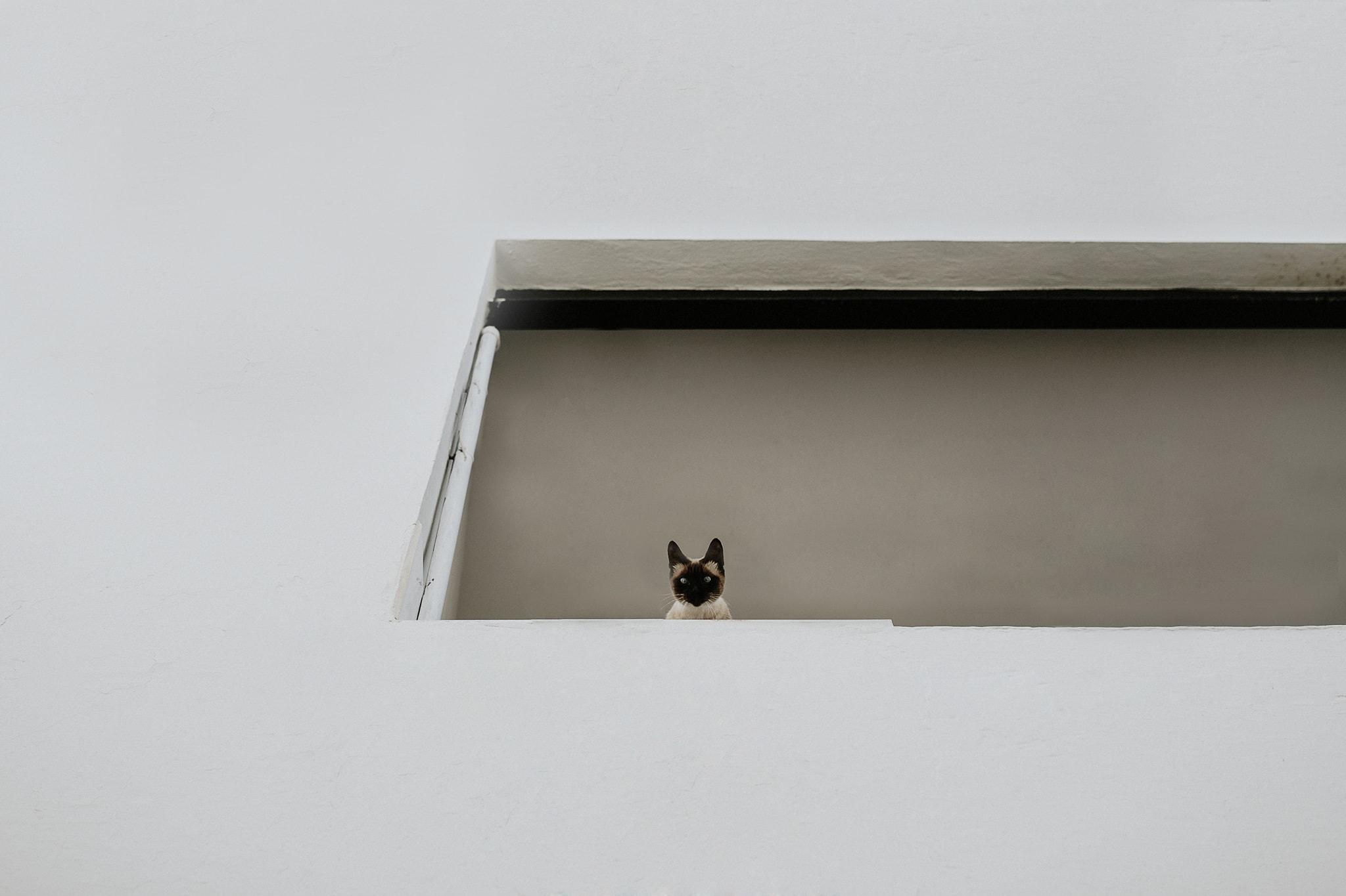 prisma-blanco-fotografia-bodas-altea-7
