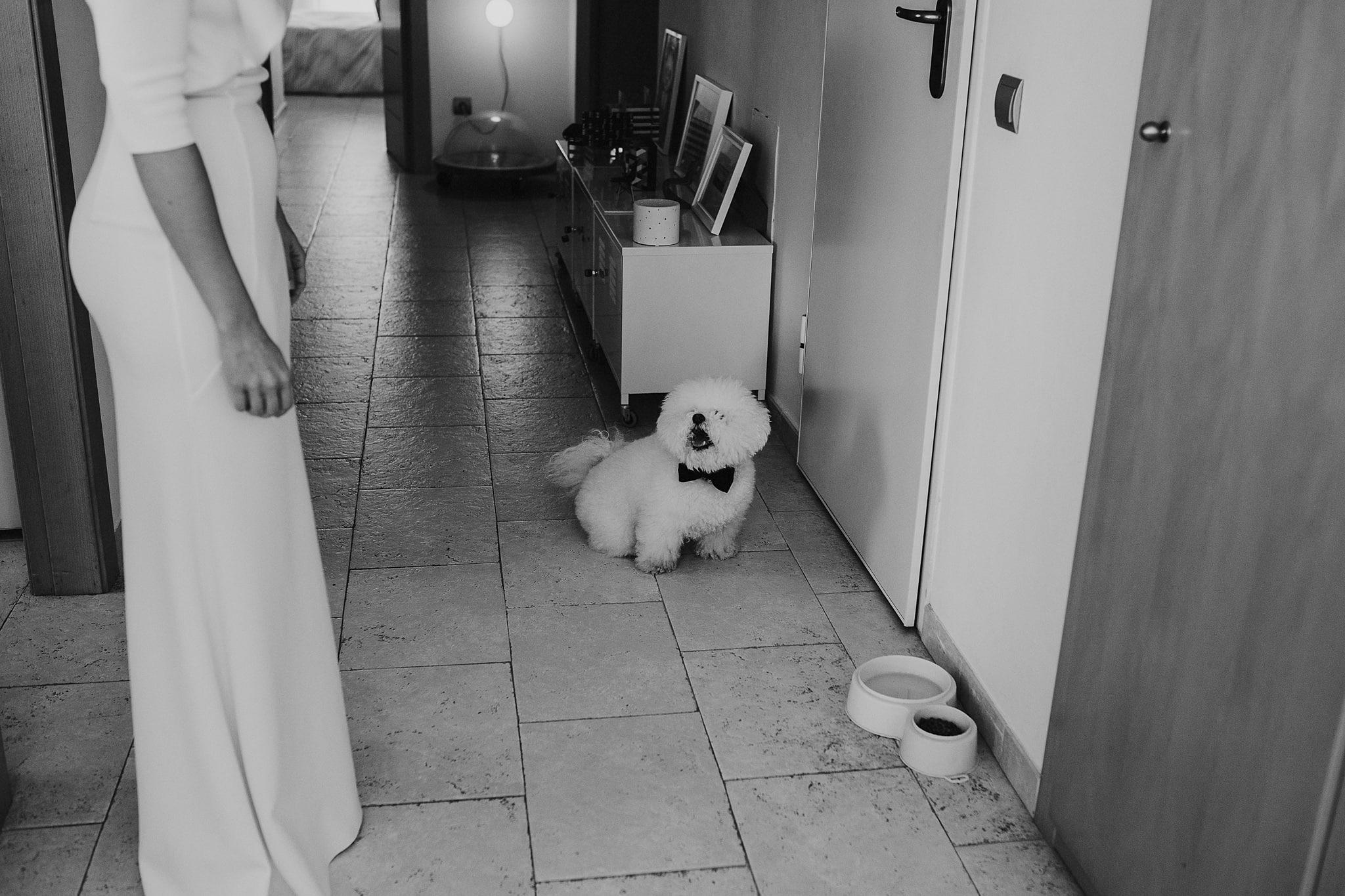 prisma-blanco-fotografia-bodas-altea-66